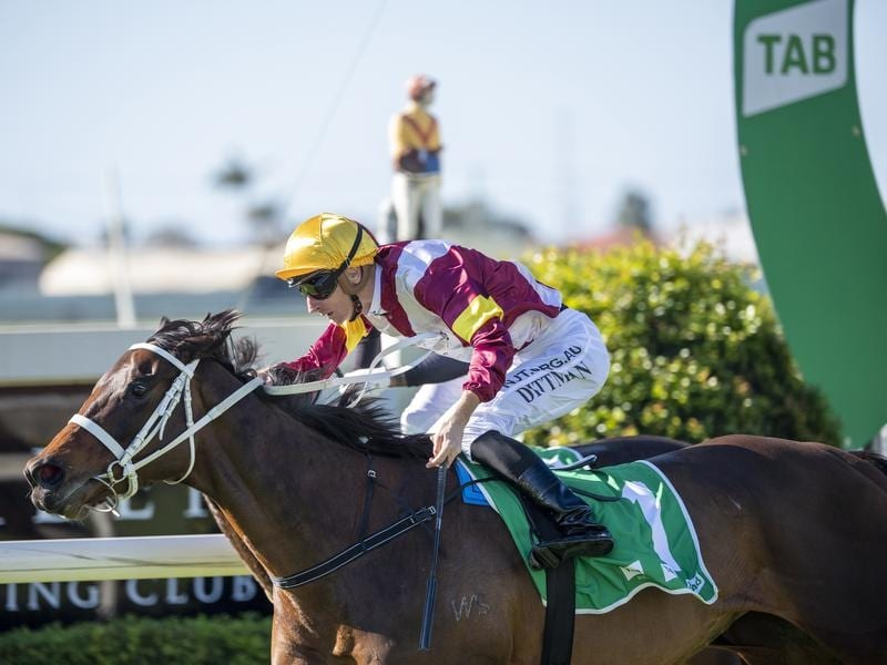 Another Dollar wins the Premiers Cup at Doomben.