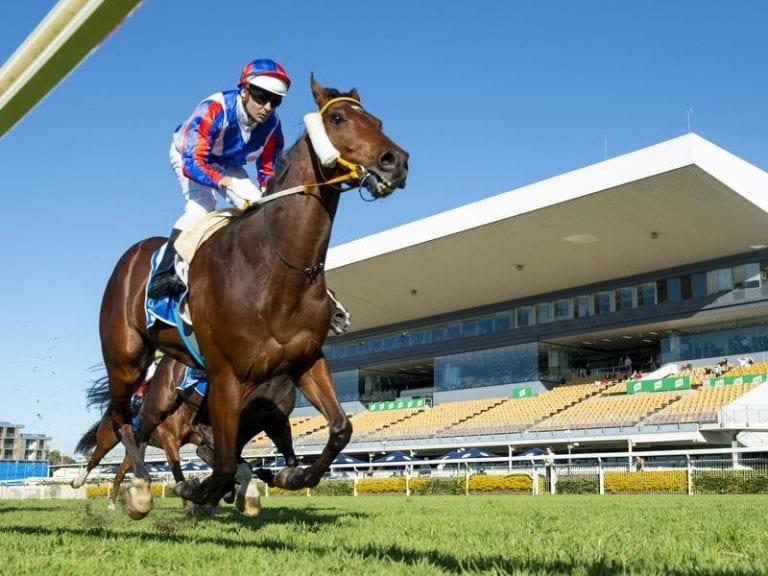 Australian horse racing odds comparison betting g1mp betting advice sites