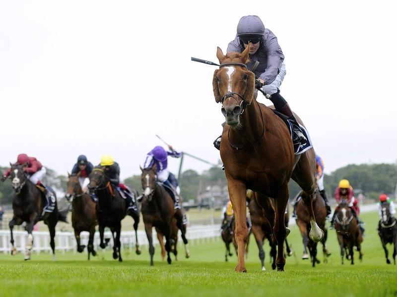 Serpentine ridden by jockey Emmet McNamara
