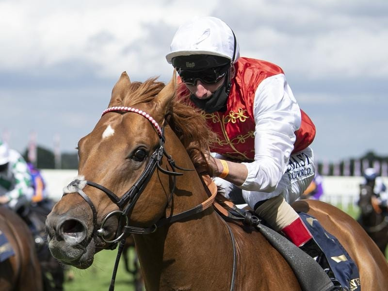 Golden Horde wins the Commonwealth Cup at Royal Ascot.