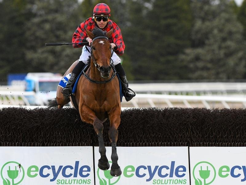 Tallyho Twinkletoe to defend Grand National Hurdle