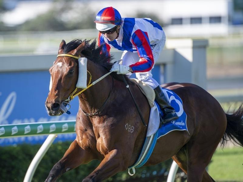 Australian horse racing odds comparison betting nfl week 7 betting lines