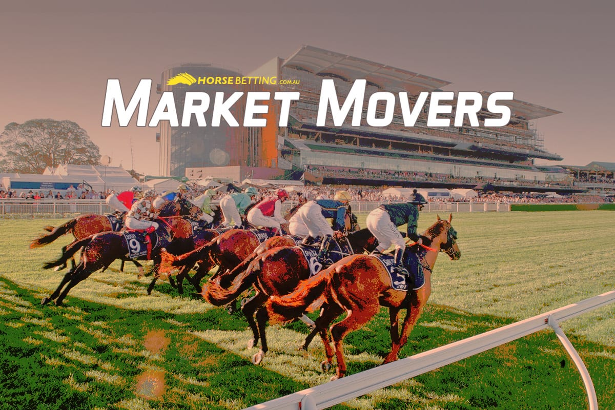 Horse Racing best bets market movers