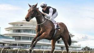 Ballarat races horse betting tips for Sunday 20th September 2020