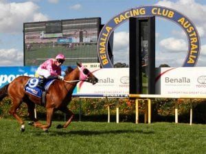 Benalla racing tips