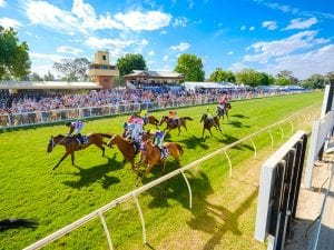 Wodonga racing