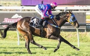 Kalgoorlie Cup Horse Betting Race Preview & Tips