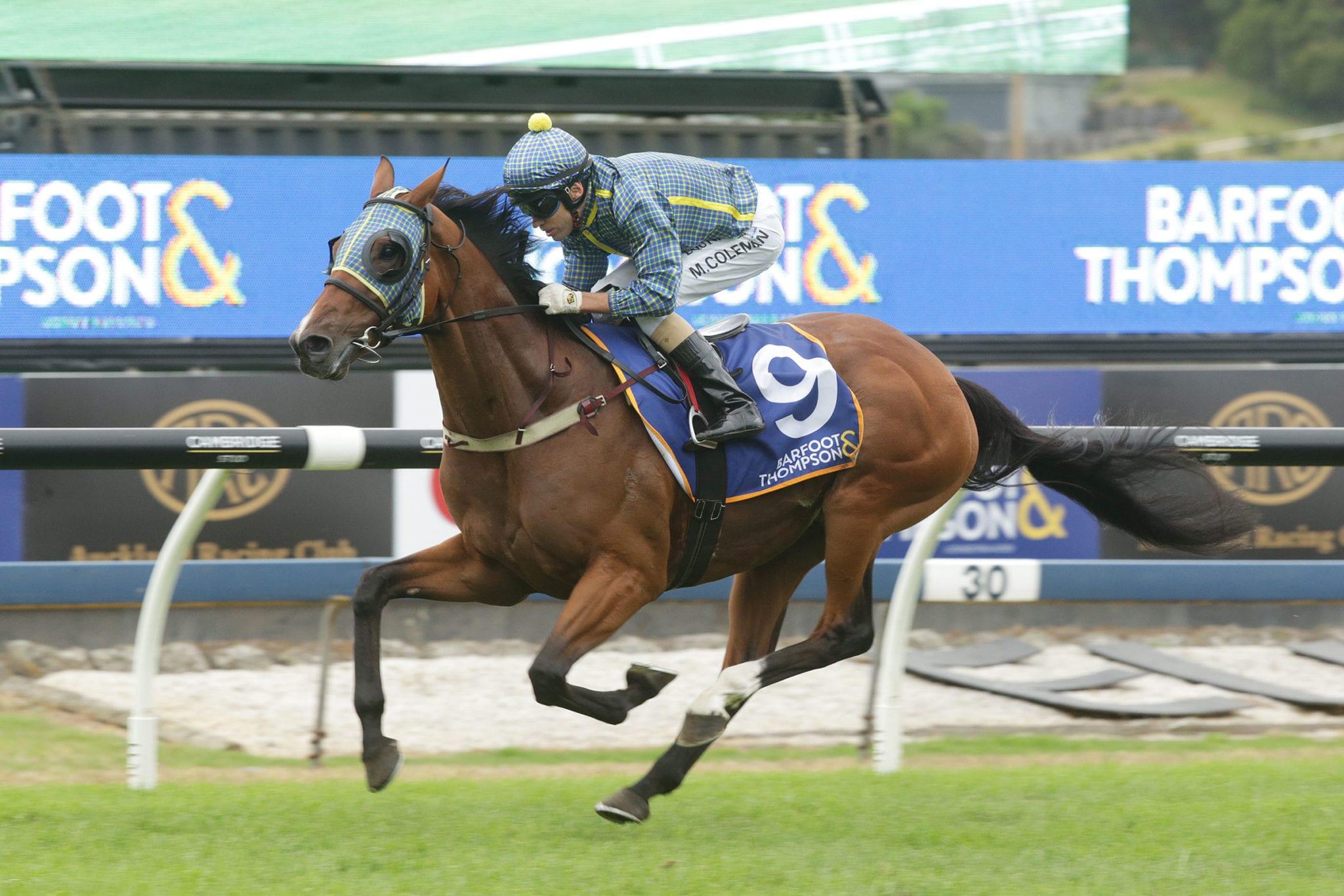Banker horse betting hockey sports betting tips