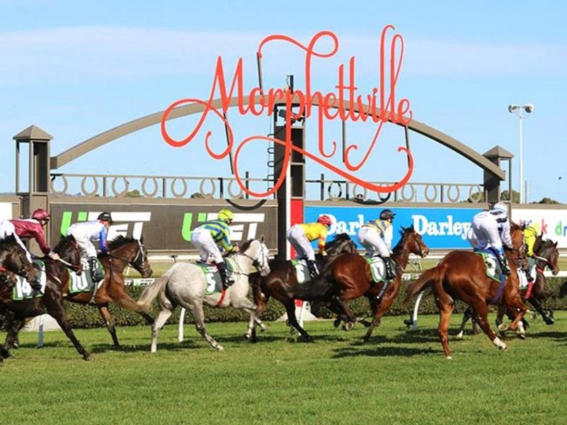 Morphettville tips for February 13