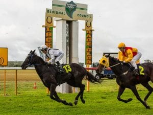 Lockyer Valley Turf Club