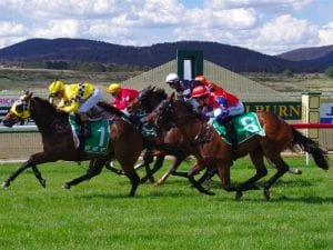 Goulburn & District Racing Club