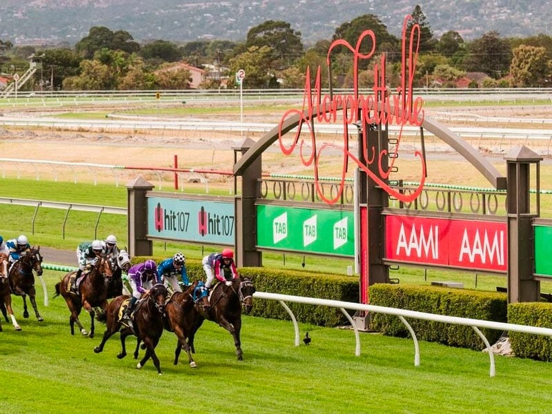 Morphettville racing tips, best bets and quaddie selections; April 24 racing preview