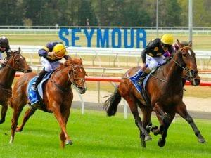 Seymour Racing Club