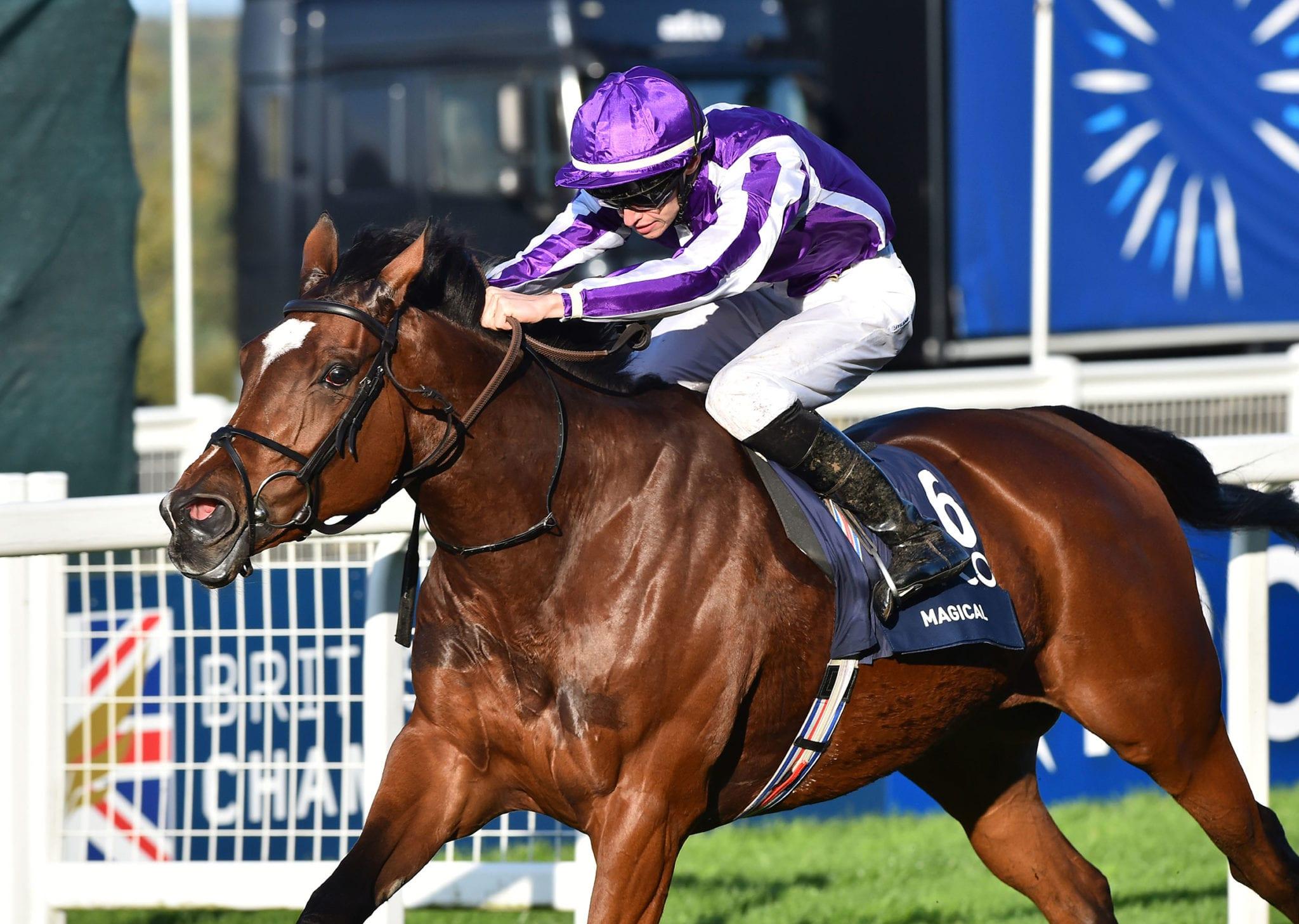 horse racing betting online uk pharmacy
