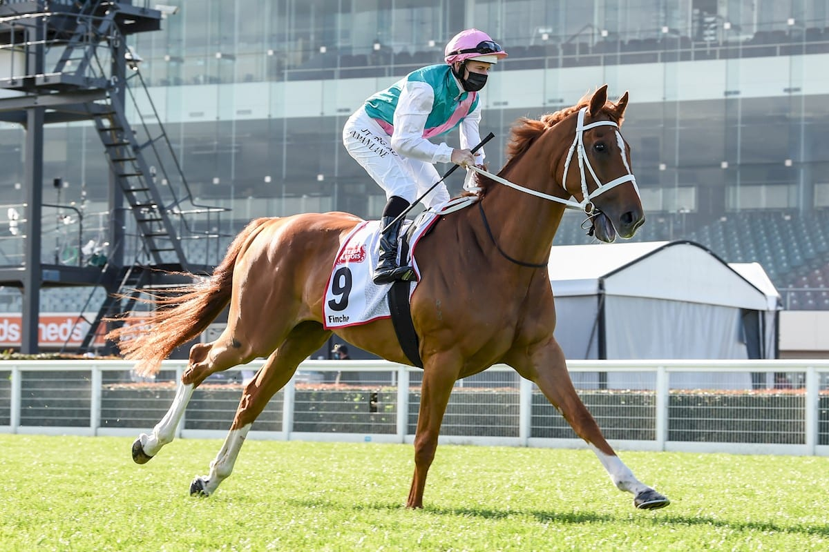Melbourne cup betting specials at mcdonalds soccer betting lines world cup