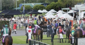 Ellerslie racecourse