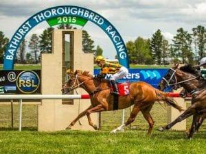 Bathurst Thoroughbred Racing