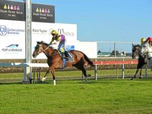 Dalby races