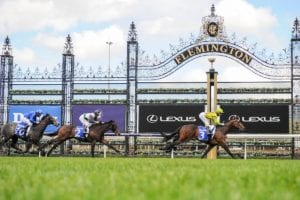2021 Blue Diamond Preview (C & G) Top Betting Tips & Best Odds