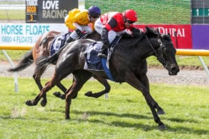 Matchmaker is one of the favourites for the HB Carr Stakes on Saturday