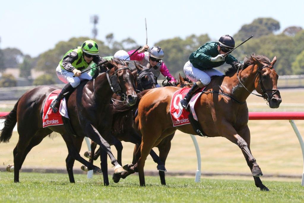 Sandown horse racing australia betting zorgenvriendje betting
