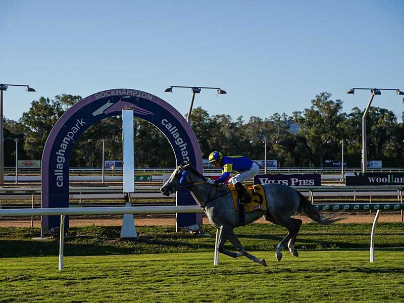 Absolut Artie passes the post at Rockhampton first