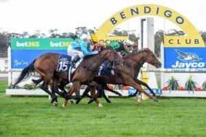 Horse racing at Bendigo