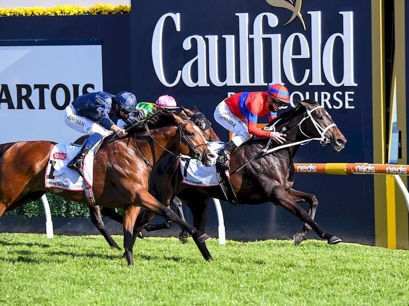 horse racing betting online australia news