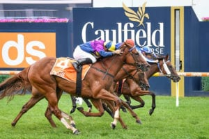 2021 Typhoon Tracy Stakes top betting strategy | Moonee Valley R7