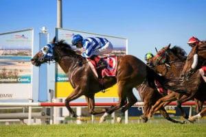 Sunshine Coast betting tips, odds & quaddie | Friday, April 30