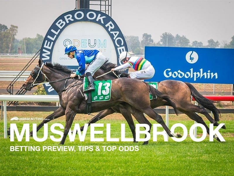 Muswellbrook tips