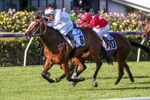 2021 AJC Challenge Stakes tips & top odds | Randwick Race 5