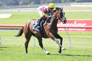 2021 Australasian Oaks betting preview & tips   Morphettville R8