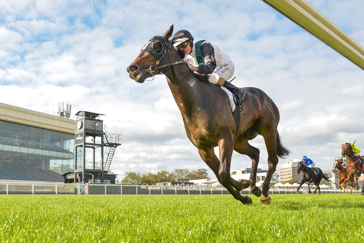 Finance Tycoon joins Danny O'Brien stable