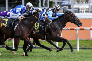 2021 Dark Jewel Classic betting tips & best odds   Scone R6