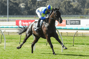The Straight Six race tips & odds   Flemington   22/5/2021