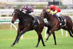 2021 Champagne Classic betting tips & top odds | Doomben, Race 5