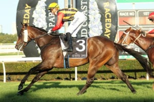 2021 Gold Coast Guineas betting preview | Saturday, May 8