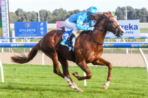 SA Sires' Produce 2021 betting preview | Morphettville R2