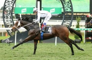 Traduce & Dr Why Not Make It Back-To-Back Wins At Eagle Farm