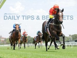 Today's horse racing tips & best bets   May 19, 2021