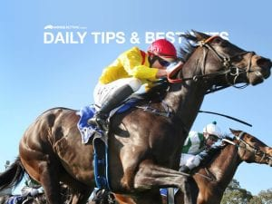 Today's horse racing tips & best bets   May 20, 2021