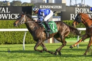 Takeover Target Stakes betting tips & strategy | Gosford R6