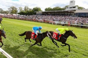 Albury betting tips, value bets & top odds | Monday, May 24