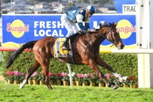 Le Don De Vie wins Warrnambool Cup
