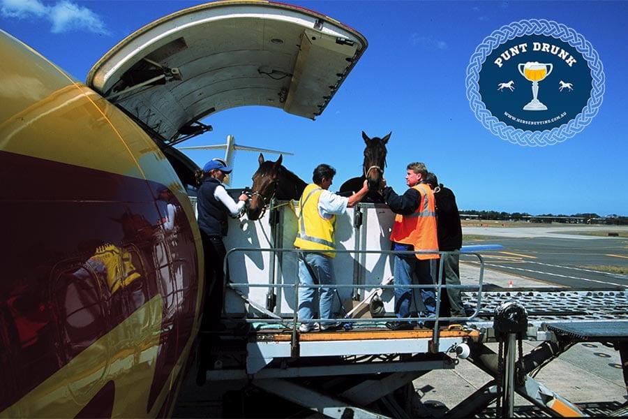 Air Horse Transport