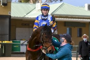 Yendall and Adelaide Ace win Swan Hill Cup 2021
