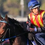2021 JJ Atkins betting tips, best odds & form guide | Eagle Farm