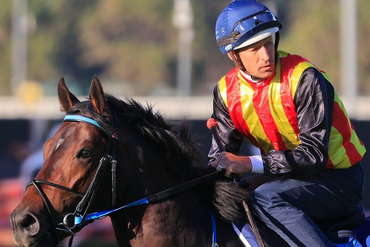 JJ Atkins betting tips