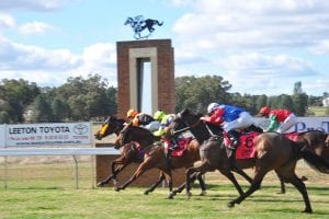 Narrandera betting tips, quaddie picks & value bets | 18/7/2021